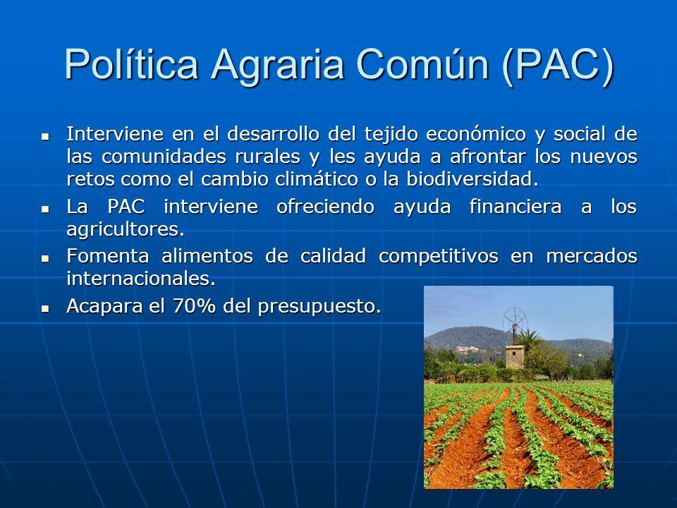 Política Agraria Común (PAC) Interviene en el desarrollo del tejido económico y social de las comunidades rurales y les ayuda a afrontar los nuevos re