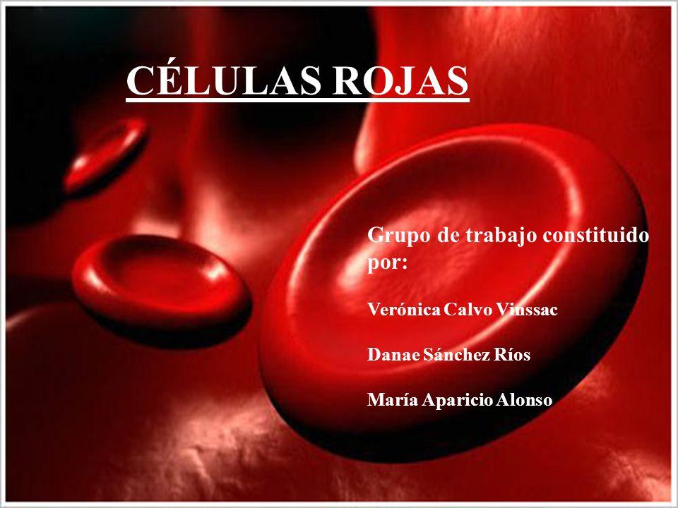 CÉLULAS ROJAS Grupo de trabajo constituido por: Verónica Calvo Vinssac Danae Sánchez Ríos María Aparicio Alonso