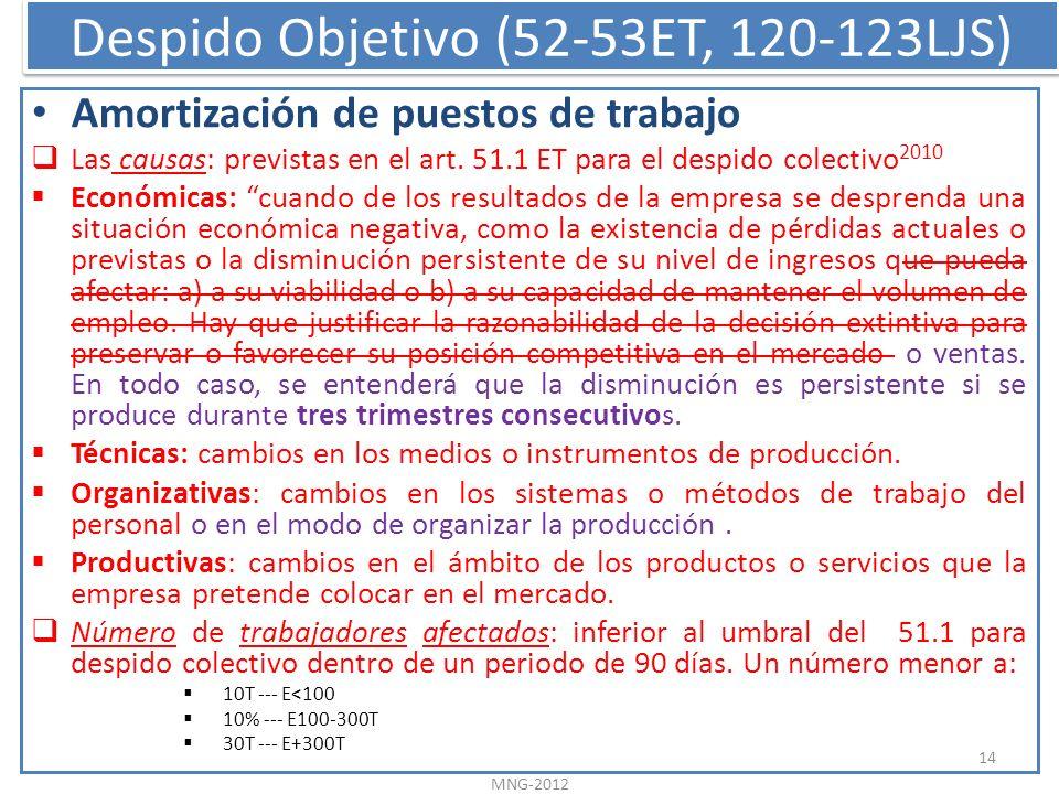 Despido Objetivo (52-53ET, 120-123LJS) Amortización de puestos de trabajo Las causas: previstas en el art. 51.1 ET para el despido colectivo 2010 Econ