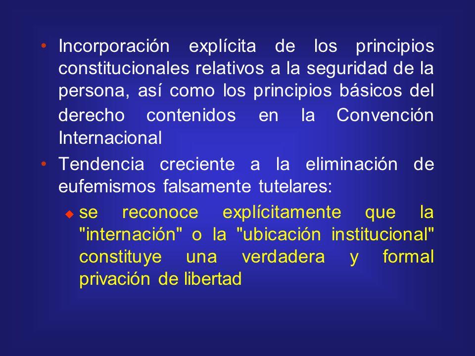 Incorporación explícita de los principios constitucionales relativos a la seguridad de la persona, así como los principios básicos del derecho conteni