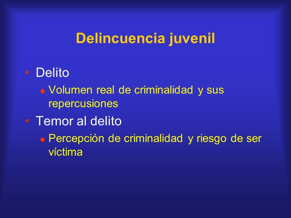 Delincuencia juvenil Delito Volumen real de criminalidad y sus repercusiones Temor al delito Percepción de criminalidad y riesgo de ser víctima