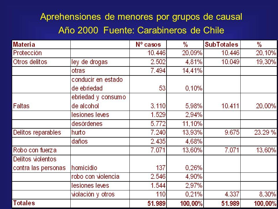 Aprehensiones de menores por grupos de causal Año 2000 Fuente: Carabineros de Chile