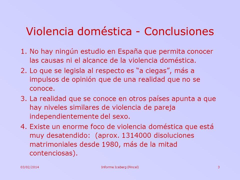 03/02/2014Informe Iceberg (Pincel)3 Violencia doméstica - Conclusiones 1.No hay ningún estudio en España que permita conocer las causas ni el alcance