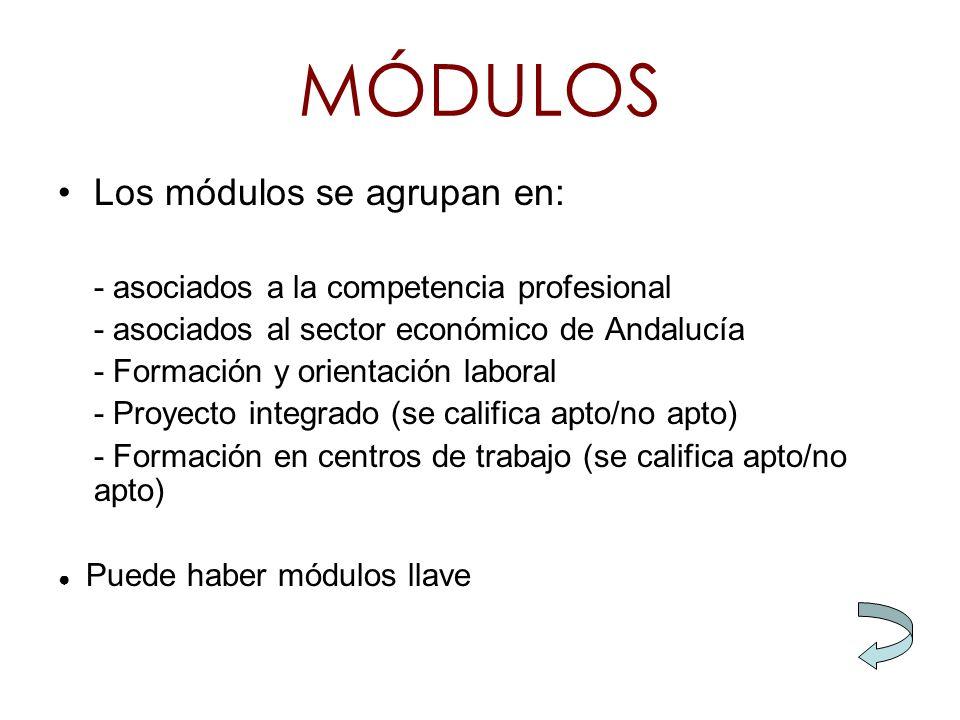 MÓDULOS Los módulos se agrupan en: - asociados a la competencia profesional - asociados al sector económico de Andalucía - Formación y orientación lab