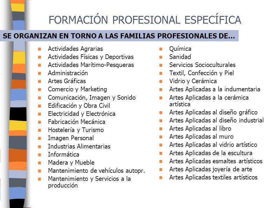FORMACIÓN PROFESIONAL ESPECÍFICA Constituyen un instrumento tanto para la inserción laboral de los jóvenes, como para la formación permanente de los p