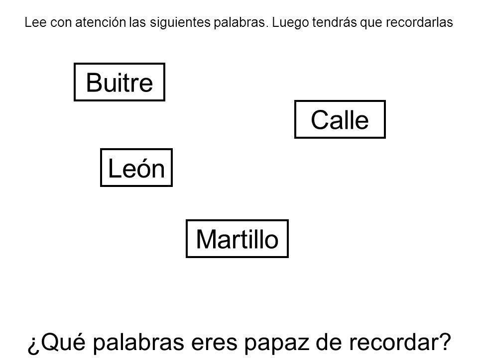 Lee con atención las siguientes palabras. Luego tendrás que recordarlas Calle Martillo León Buitre ¿Qué palabras eres papaz de recordar?