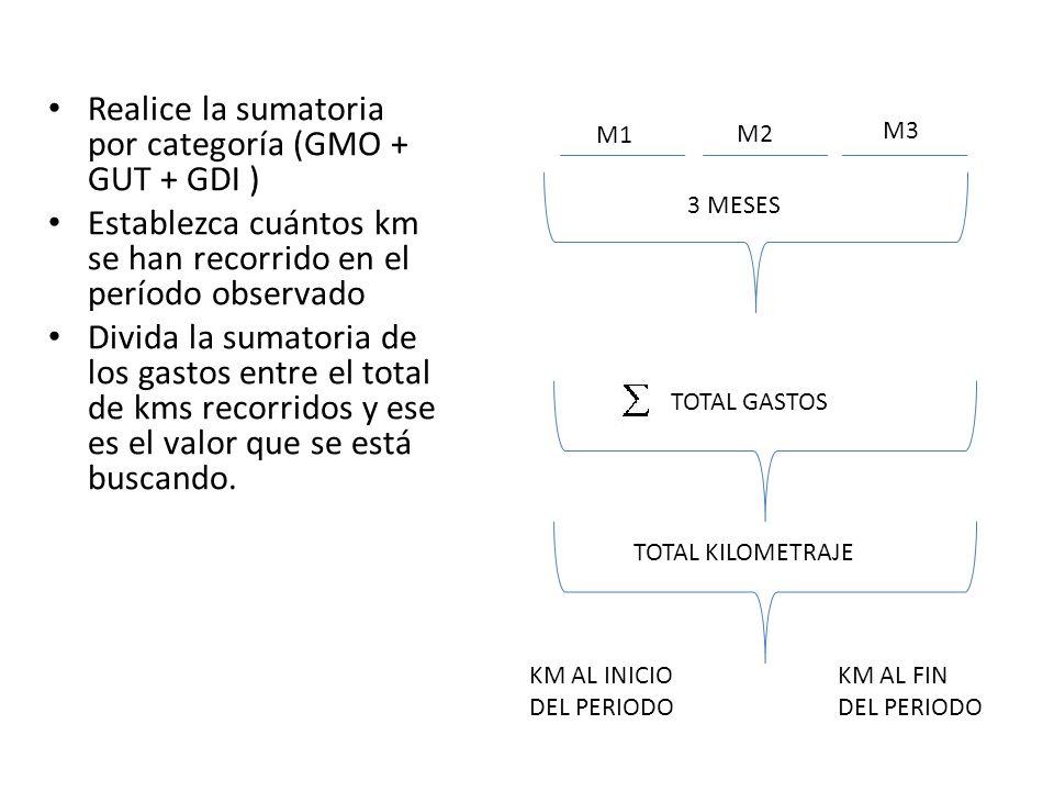 Realice la sumatoria por categoría (GMO + GUT + GDI ) Establezca cuántos km se han recorrido en el período observado Divida la sumatoria de los gastos
