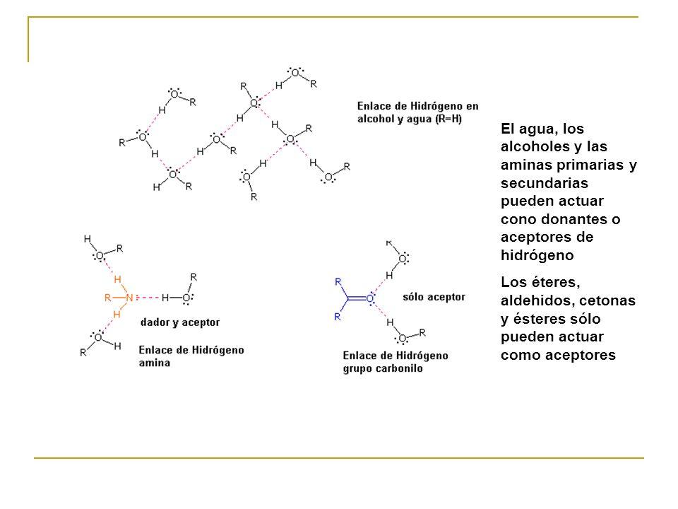 El agua, los alcoholes y las aminas primarias y secundarias pueden actuar cono donantes o aceptores de hidrógeno Los éteres, aldehidos, cetonas y éste