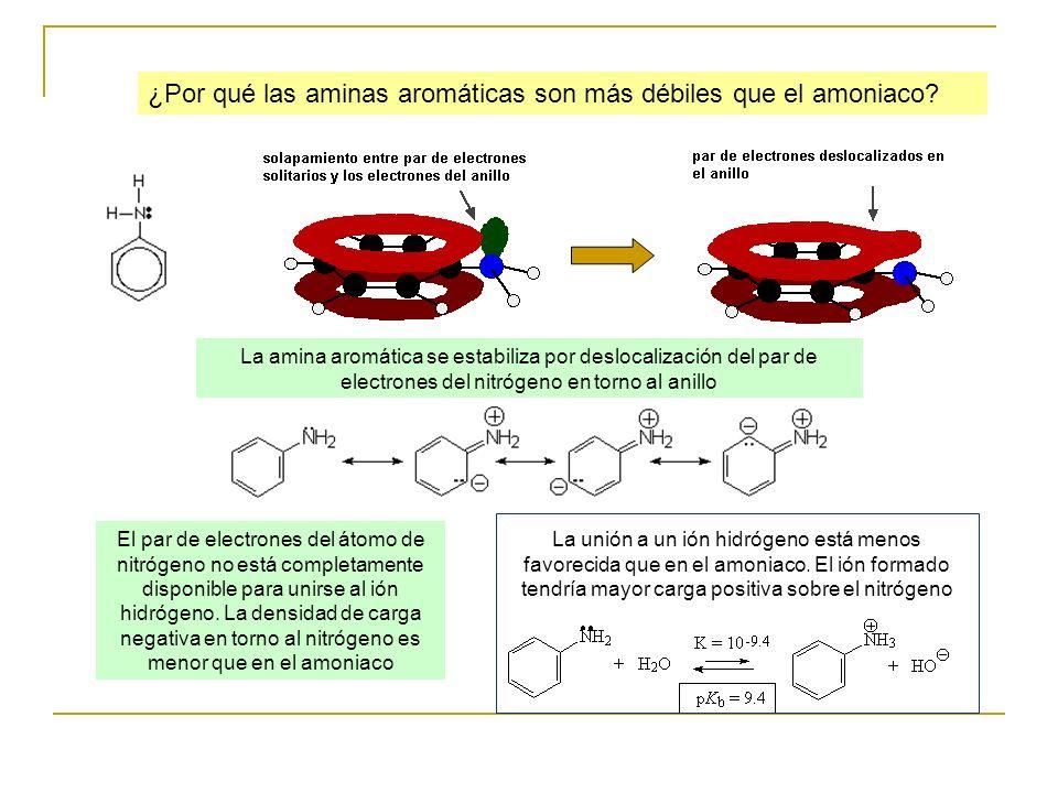 ¿Por qué las aminas aromáticas son más débiles que el amoniaco? El par de electrones del átomo de nitrógeno no está completamente disponible para unir