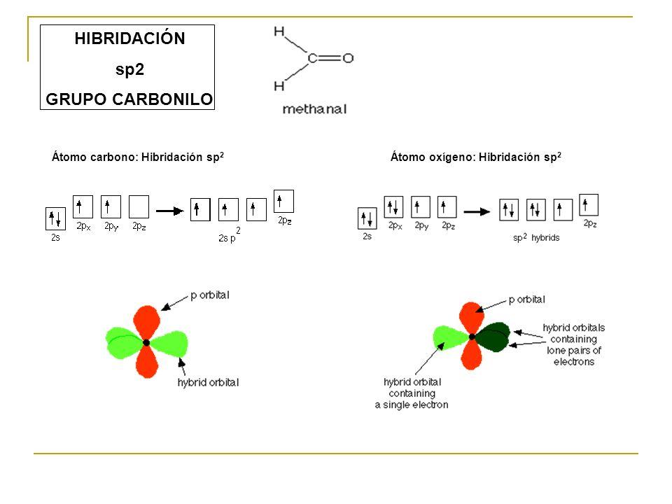 HIBRIDACIÓN sp2 GRUPO CARBONILO Átomo carbono: Hibridación sp 2 Átomo oxígeno: Hibridación sp 2