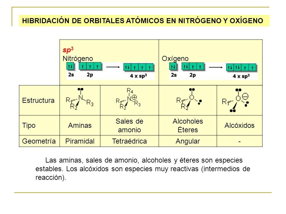 HIBRIDACIÓN DE ORBITALES ATÓMICOS EN NITRÓGENO Y OXÍGENO sp 3 Nitrógeno Oxígeno Estructura TipoAminas Sales de amonio Alcoholes Éteres Alcóxidos Geome