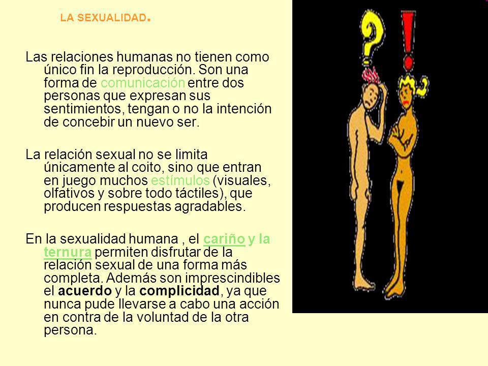 LA SEXUALIDAD. Las relaciones humanas no tienen como único fin la reproducción. Son una forma de comunicación entre dos personas que expresan sus sent