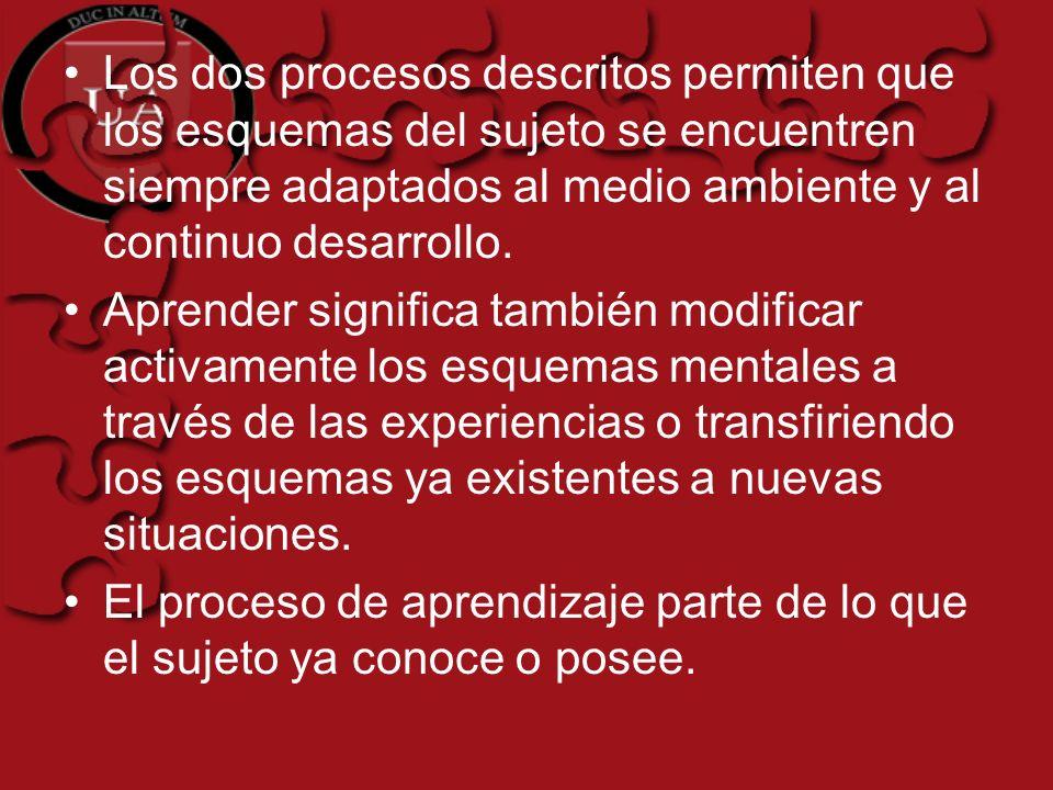 Los dos procesos descritos permiten que los esquemas del sujeto se encuentren siempre adaptados al medio ambiente y al continuo desarrollo. Aprender s