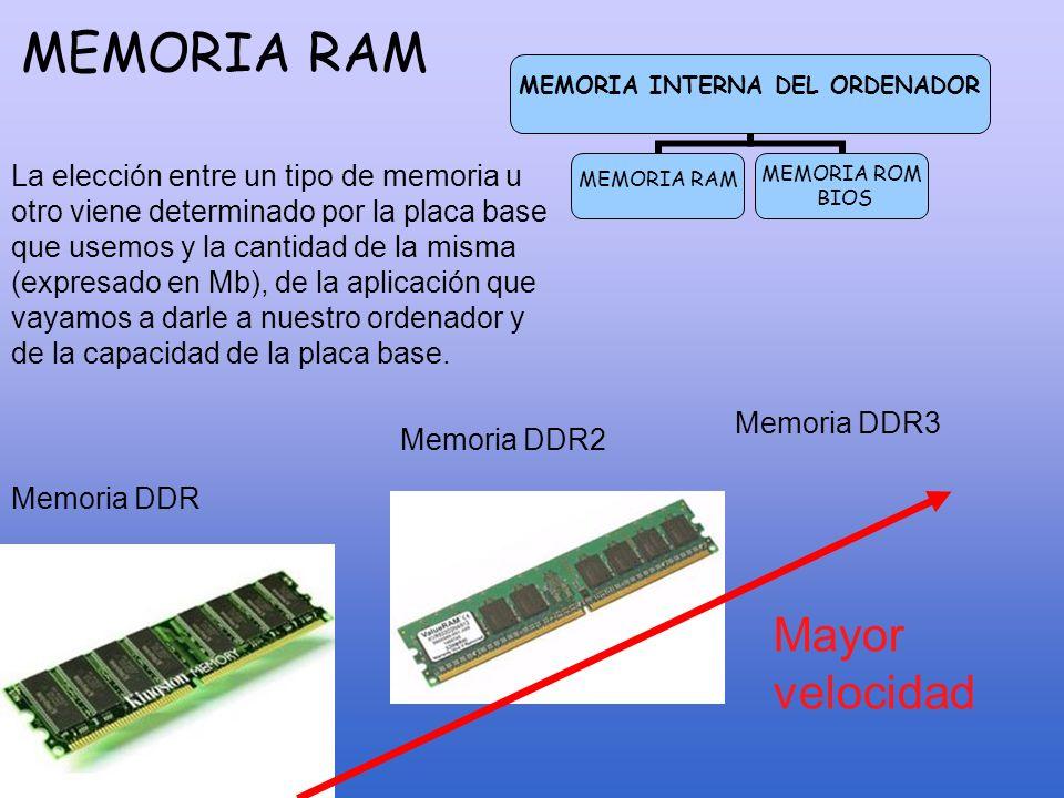 LOS PUERTOS Serie (en desuso) Paralelo (en desuso) USB PS/2 Teclado, ratón, scanner, impresora, etc.