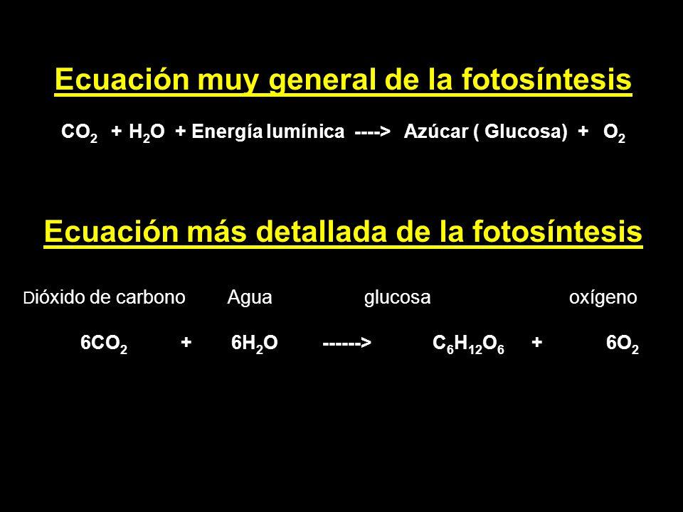 Ecuación muy general de la fotosíntesis CO 2 + H 2 O + Energía lumínica ----> Azúcar ( Glucosa) + O 2 Ecuación más detallada de la fotosíntesis D ióxi