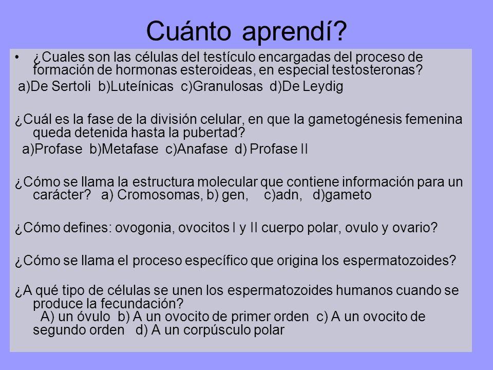 Cuánto aprendí? ¿Cuales son las células del testículo encargadas del proceso de formación de hormonas esteroideas, en especial testosteronas? a)De Ser