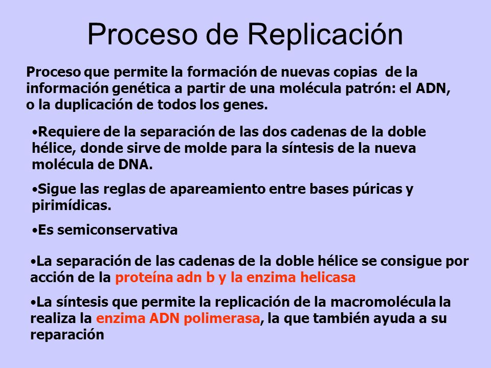 Proceso de Replicación Proceso que permite la formación de nuevas copias de la información genética a partir de una molécula patrón: el ADN, o la dupl