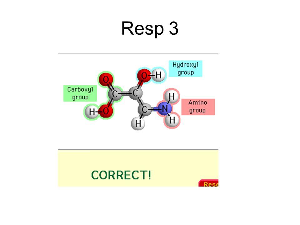 Resp 3