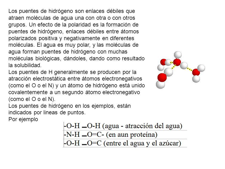 Los puentes de hidrógeno son enlaces débiles que atraen moléculas de agua una con otra o con otros grupos. Un efecto de la polaridad es la formación d