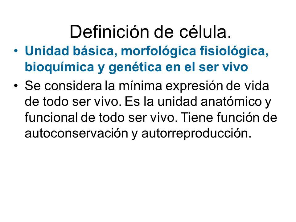 OBJETIVOS DE LA CLASE. Describir las estructuras comunes que tienen las células animales y vegetales: membrana plasmática, citoplasma, mitocondrias y