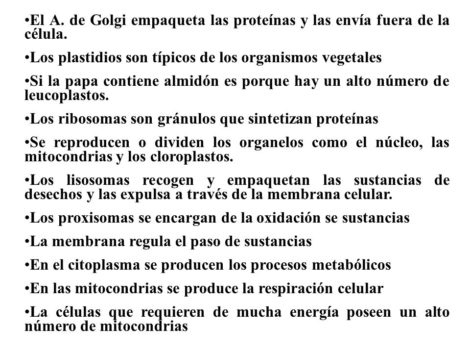 Los seres vivos están formados por células Hay células de diferentes formas dependiendo de su función y del organismo que constituyan En la célula se