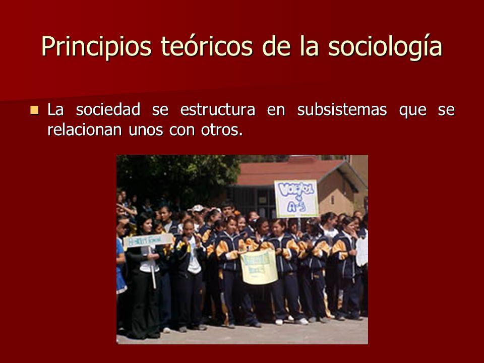 Principios teóricos de la sociología La sociedad se estructura en subsistemas que se relacionan unos con otros. La sociedad se estructura en subsistem