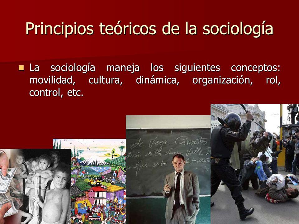 Principios teóricos de la sociología La sociología maneja los siguientes conceptos: movilidad, cultura, dinámica, organización, rol, control, etc. La