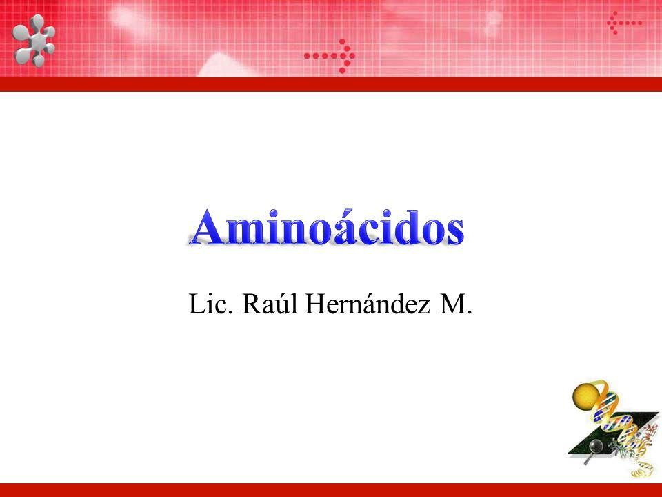 Lic. Raúl Hernández M.