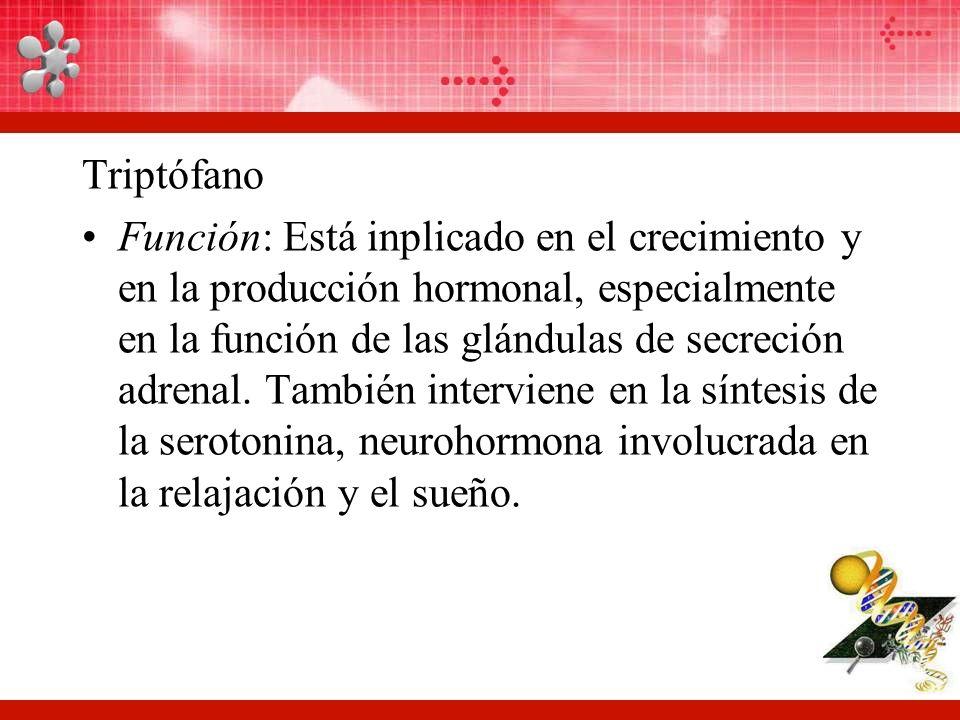Triptófano Función: Está inplicado en el crecimiento y en la producción hormonal, especialmente en la función de las glándulas de secreción adrenal.