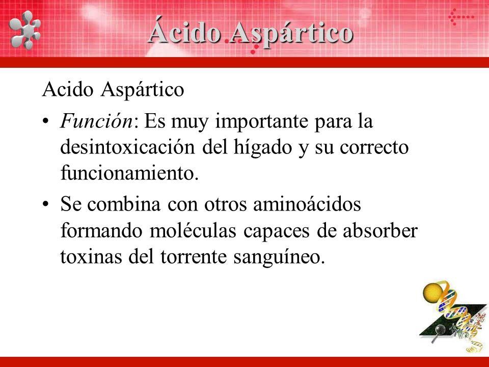 Ácido Aspártico Acido Aspártico Función: Es muy importante para la desintoxicación del hígado y su correcto funcionamiento.
