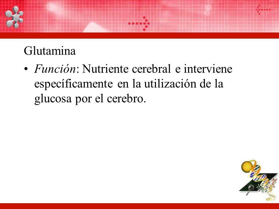 Glutamina Función: Nutriente cerebral e interviene específicamente en la utilización de la glucosa por el cerebro.