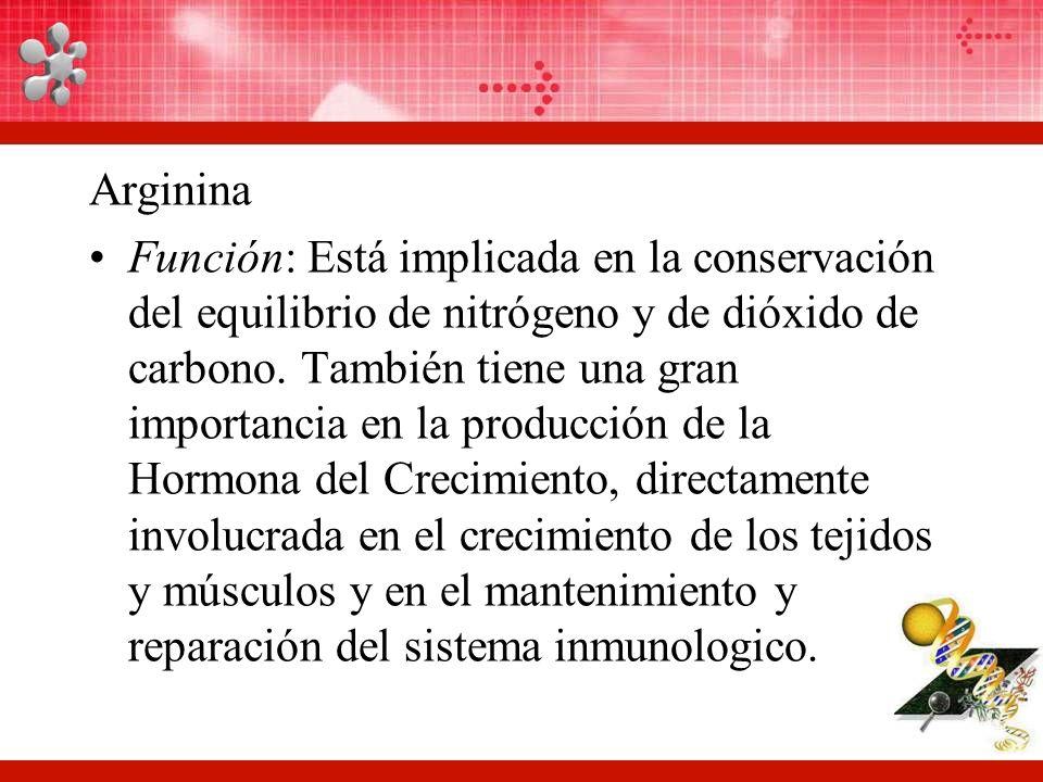 Arginina Función: Está implicada en la conservación del equilibrio de nitrógeno y de dióxido de carbono.