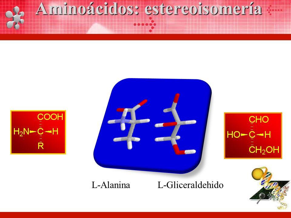 L-AlaninaL-Gliceraldehido Aminoácidos: estereoisomería