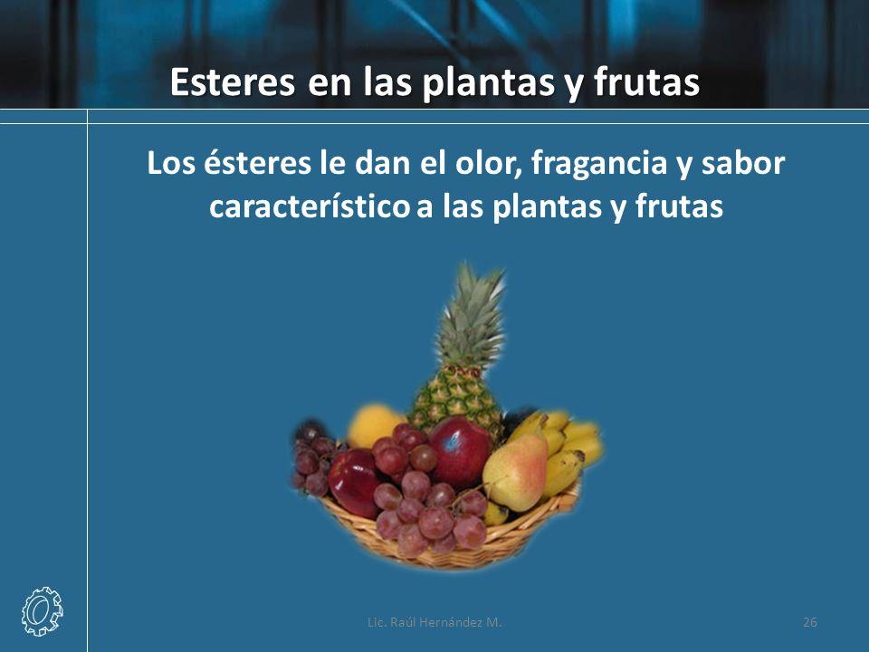 Esteres en las plantas y frutas Lic. Raúl Hernández M.26 Los ésteres le dan el olor, fragancia y sabor característico a las plantas y frutas