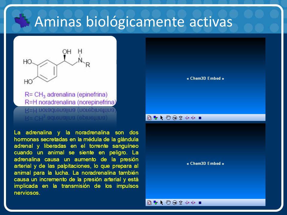 Aminas biológicamente activas La adrenalina y la noradrenalina son dos hormonas secretadas en la médula de la glándula adrenal y liberadas en el torre