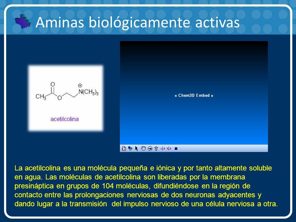 Aminas biológicamente activas La acetilcolina es una molécula pequeña e iónica y por tanto altamente soluble en agua. Las moléculas de acetilcolina so