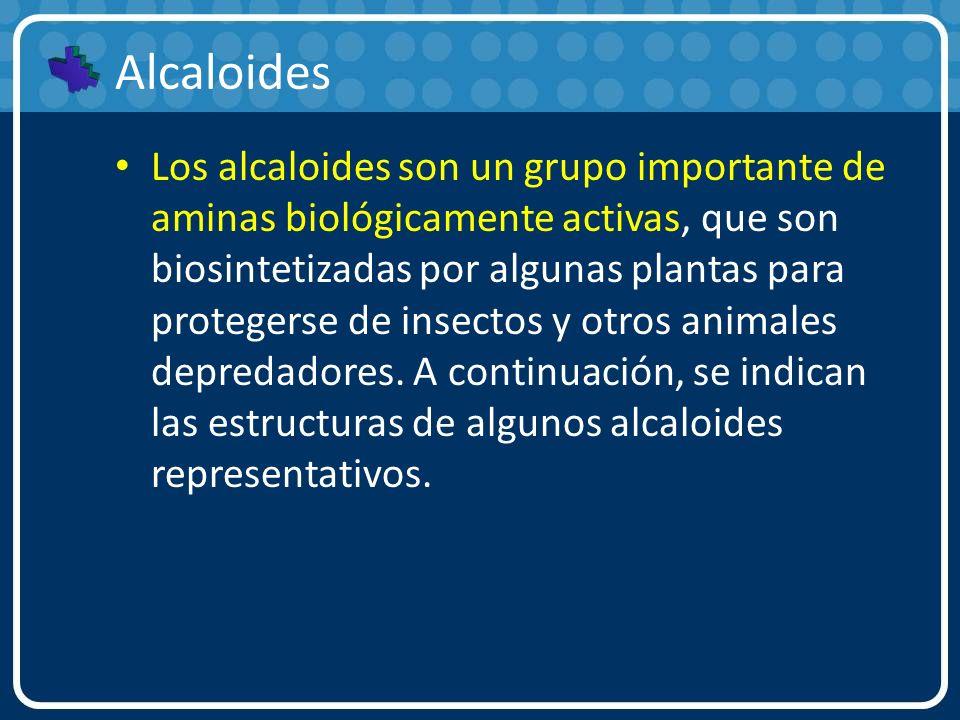 Alcaloides Los alcaloides son un grupo importante de aminas biológicamente activas, que son biosintetizadas por algunas plantas para protegerse de ins