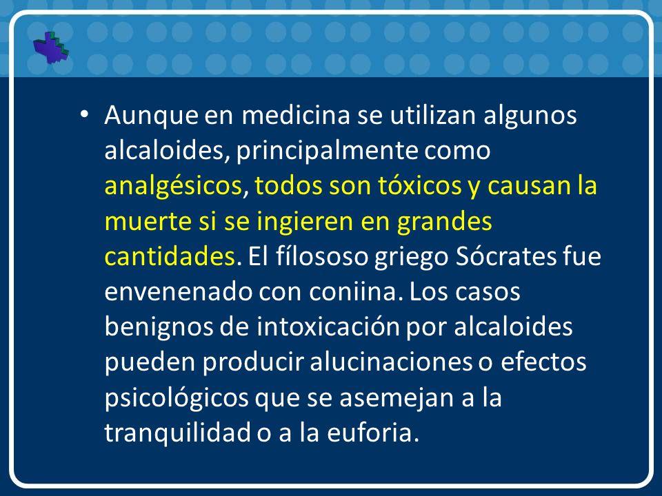 Aunque en medicina se utilizan algunos alcaloides, principalmente como analgésicos, todos son tóxicos y causan la muerte si se ingieren en grandes can