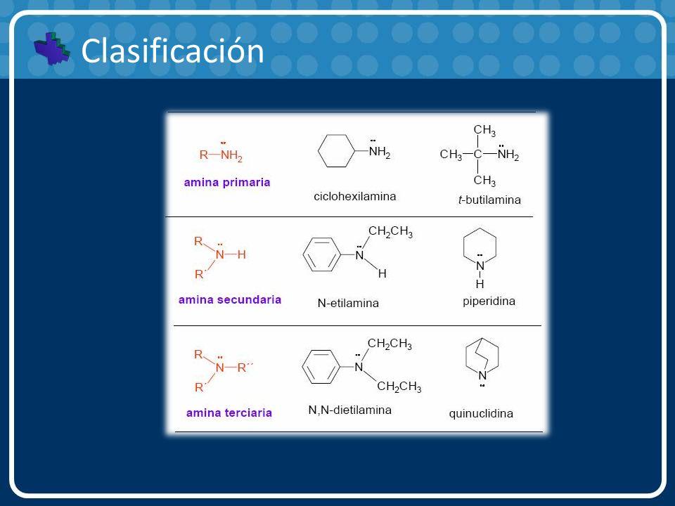 Nomenclatura a) Las aminas se pueden nombrar mencionando primero los grupos alquilo unidos al nitrógeno, seguidos del sufijo -amina.