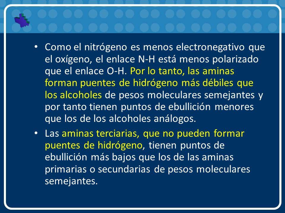 Como el nitrógeno es menos electronegativo que el oxígeno, el enlace N-H está menos polarizado que el enlace O-H. Por lo tanto, las aminas forman puen