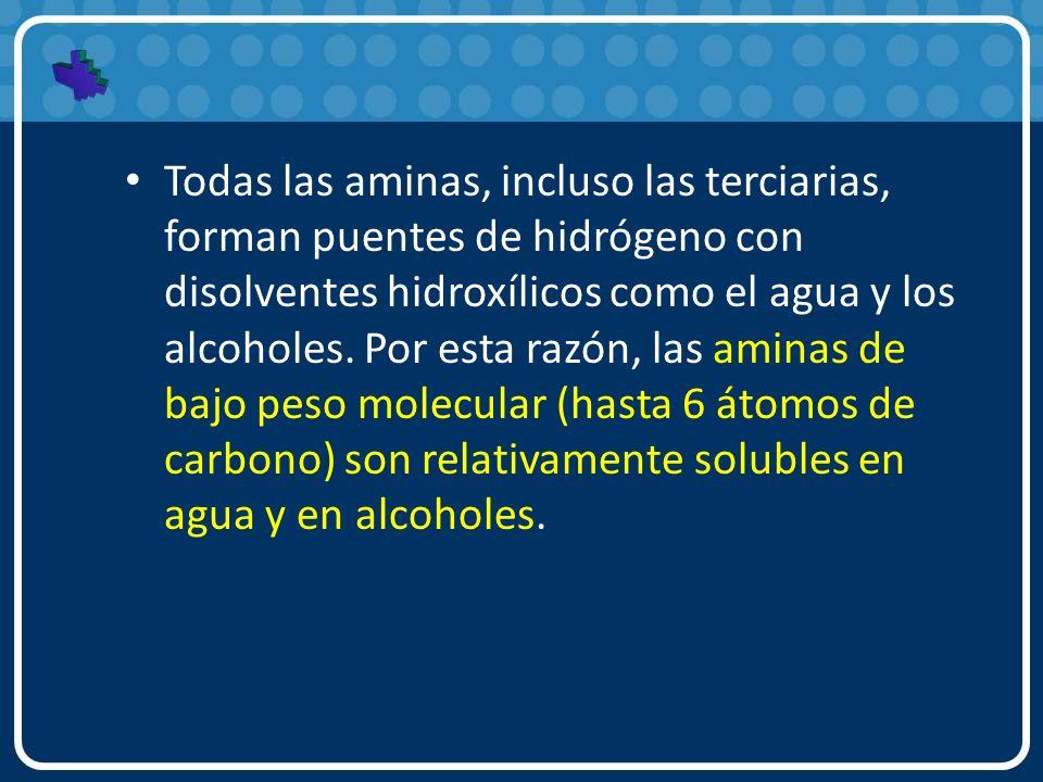 Todas las aminas, incluso las terciarias, forman puentes de hidrógeno con disolventes hidroxílicos como el agua y los alcoholes. Por esta razón, las a