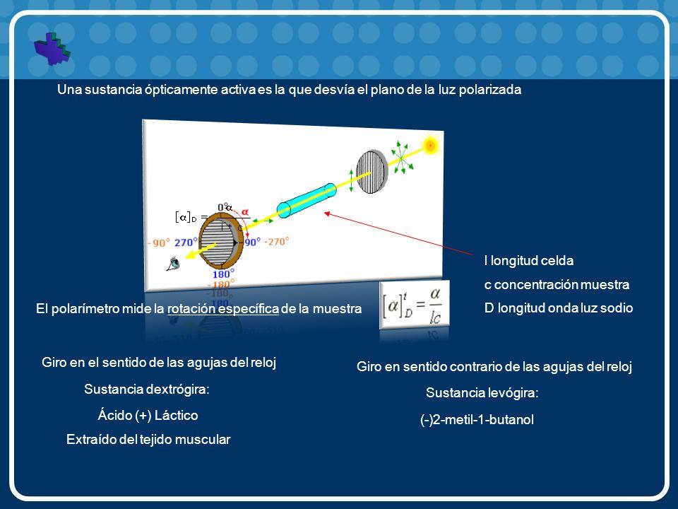 Una sustancia ópticamente activa es la que desvía el plano de la luz polarizada El polarímetro mide la rotación específica de la muestra l longitud ce