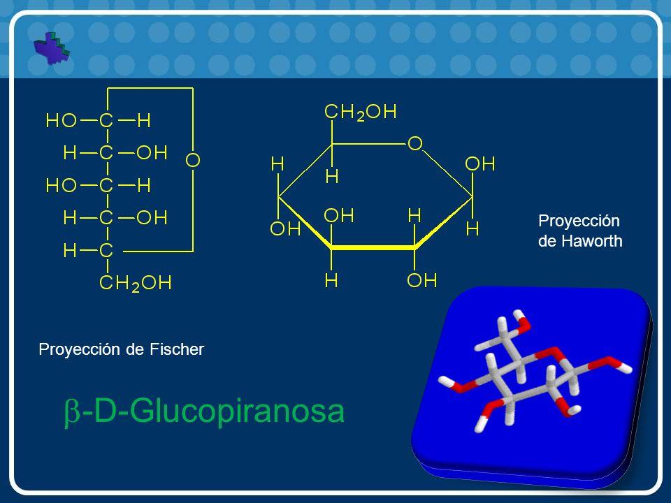 -D-Glucopiranosa Proyección de Fischer Proyección de Haworth