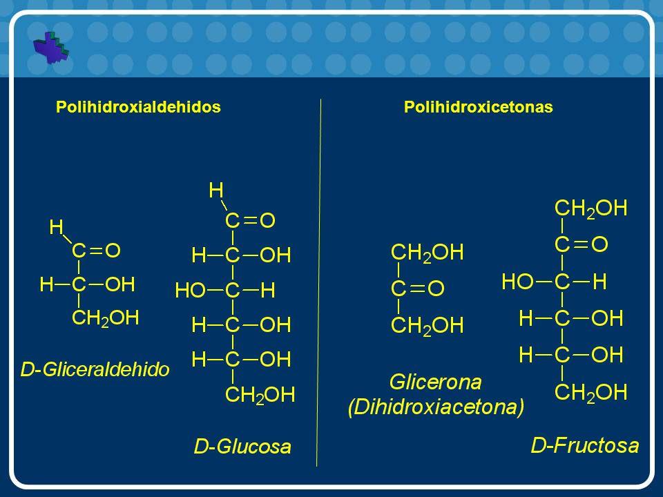 Clasificación por su hidrólisis ácida Monosacáridos: (ejemplo, la glucosa), o azúcares simples, no pueden ser fragmentados en moléculas más pequeñas por hidrólisis.