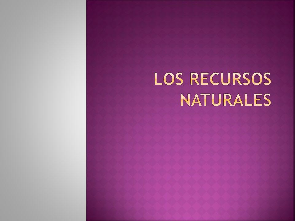 Los recursos naturales son el conjunto de elementos naturales que se encuentran en la naturaleza de forma no modificada, escasos con relación a su demanda actual o potencial.
