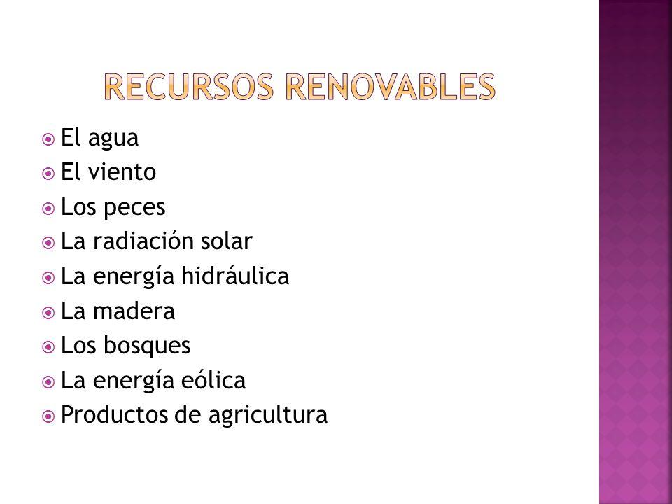El agua El viento Los peces La radiación solar La energía hidráulica La madera Los bosques La energía eólica Productos de agricultura
