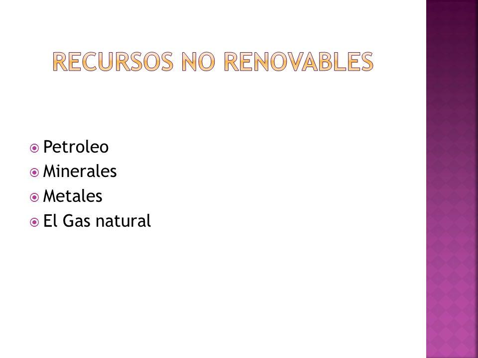 Petroleo Minerales Metales El Gas natural