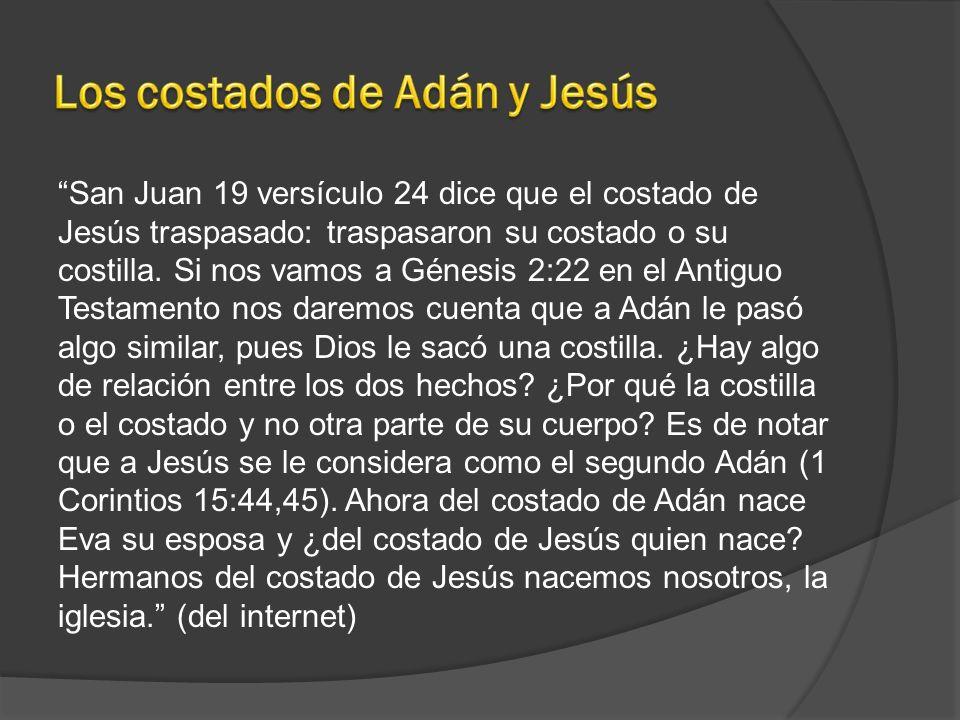 San Juan 19 versículo 24 dice que el costado de Jesús traspasado: traspasaron su costado o su costilla. Si nos vamos a Génesis 2:22 en el Antiguo Test
