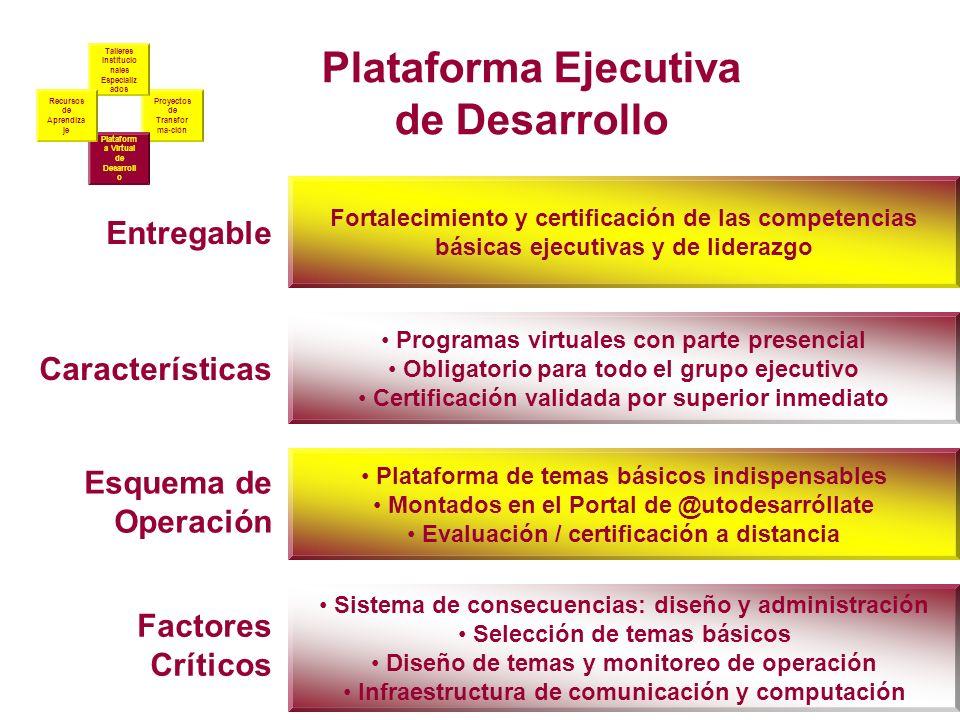 Proyectos de Transfor ma-ción Talleres Institucio nales Especializ ados Plataform a Virtual de Desarroll o Recursos de Aprendiza je Entregable Caracte