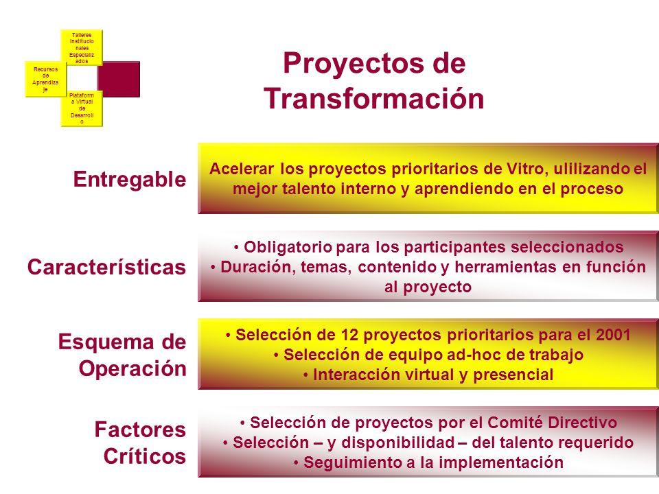 Proyectos de Transfor ma-ción Talleres Institucio nales Especializ ados Plataform a Virtual de Desarroll o Recursos de Aprendiza je Proyectos de Trans